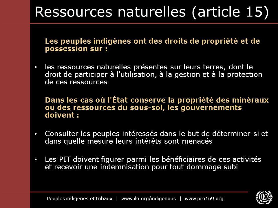 Peuples indigènes et tribaux | www.ilo.org/indigenous | www.pro169.org Ressources naturelles (article 15) Les peuples indigènes ont des droits de prop