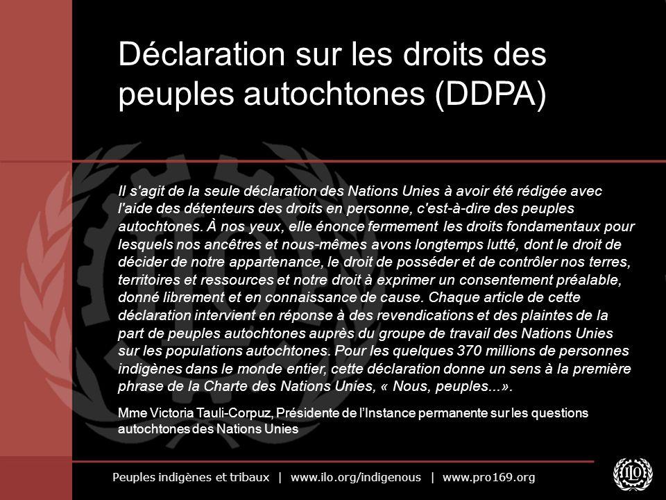 Peuples indigènes et tribaux | www.ilo.org/indigenous | www.pro169.org Il s agit de la seule déclaration des Nations Unies à avoir été rédigée avec l aide des détenteurs des droits en personne, c est-à-dire des peuples autochtones.