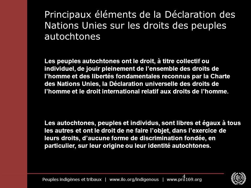 Peuples indigènes et tribaux | www.ilo.org/indigenous | www.pro169.org 4 Principaux éléments de la Déclaration des Nations Unies sur les droits des pe