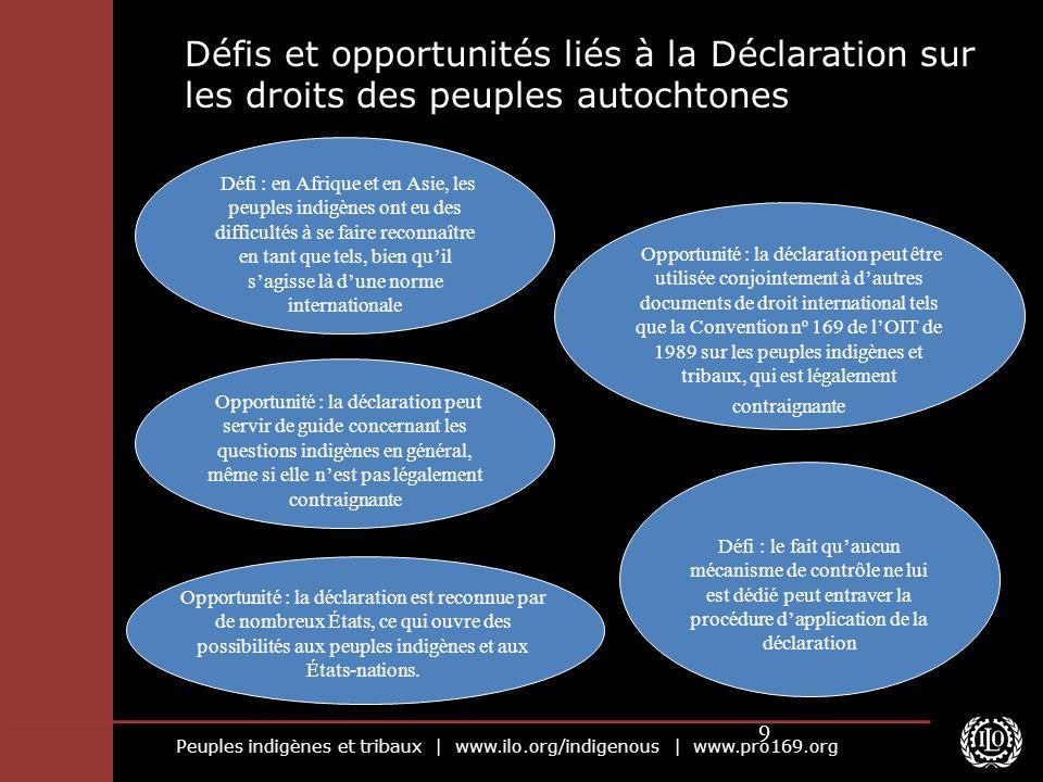 Peuples indigènes et tribaux | www.ilo.org/indigenous | www.pro169.org 9 Défis et opportunités liés à la Déclaration sur les droits des peuples autoch