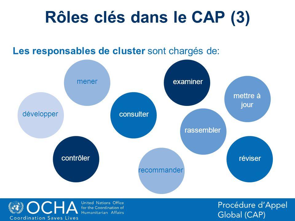 17Office for the Coordination of Humanitarian Affairs (OCHA) CAP (Consolidated Appeal Process) Section Les responsables de cluster sont chargés de: Rô