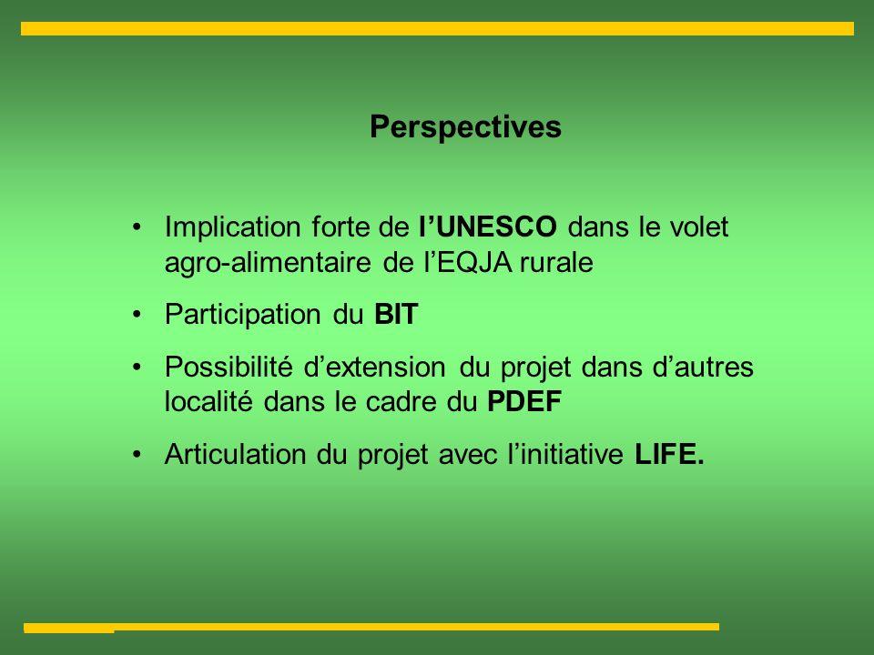 Perspectives Implication forte de lUNESCO dans le volet agro-alimentaire de lEQJA rurale Participation du BIT Possibilité dextension du projet dans da