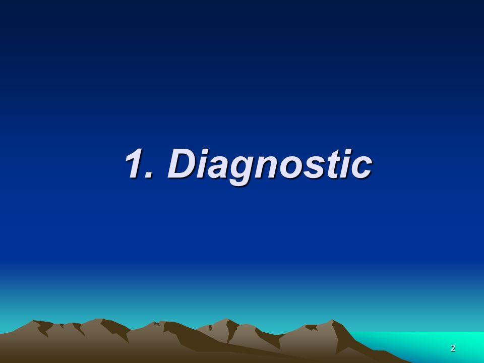 2 1. Diagnostic