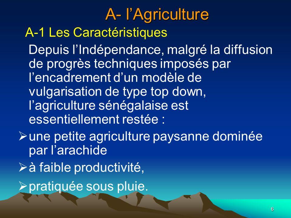 6 A- lAgriculture A-1 Les Caractéristiques Depuis lIndépendance, malgré la diffusion de progrès techniques imposés par lencadrement dun modèle de vulg
