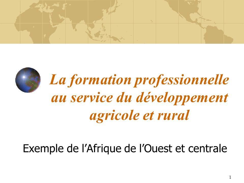 1 La formation professionnelle au service du développement agricole et rural Exemple de lAfrique de lOuest et centrale