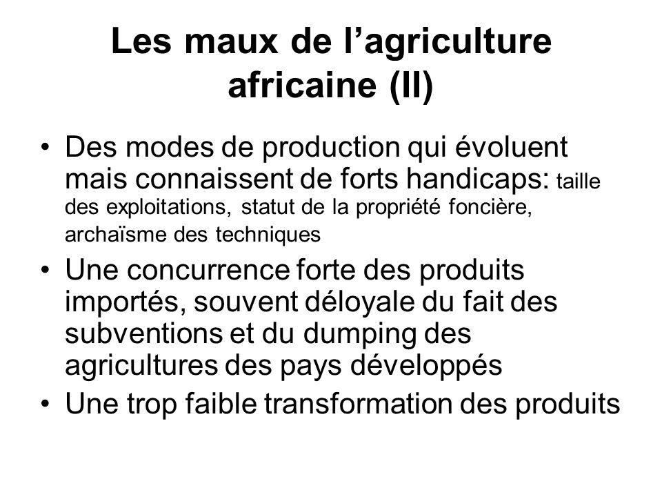 Les maux de lagriculture africaine (II) Des modes de production qui évoluent mais connaissent de forts handicaps: taille des exploitations, statut de