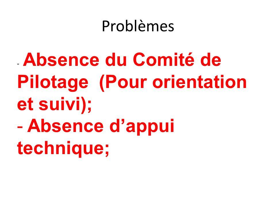 Problèmes - Absence du Comité de Pilotage (Pour orientation et suivi); - Absence dappui technique;