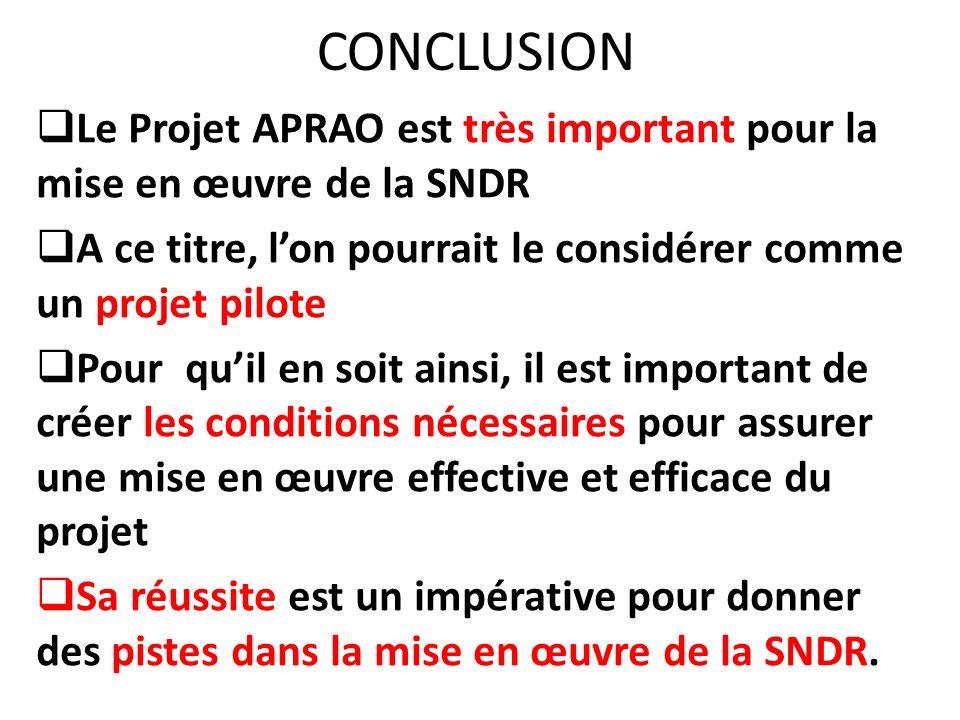 CONCLUSION Le Projet APRAO est très important pour la mise en œuvre de la SNDR A ce titre, lon pourrait le considérer comme un projet pilote Pour quil