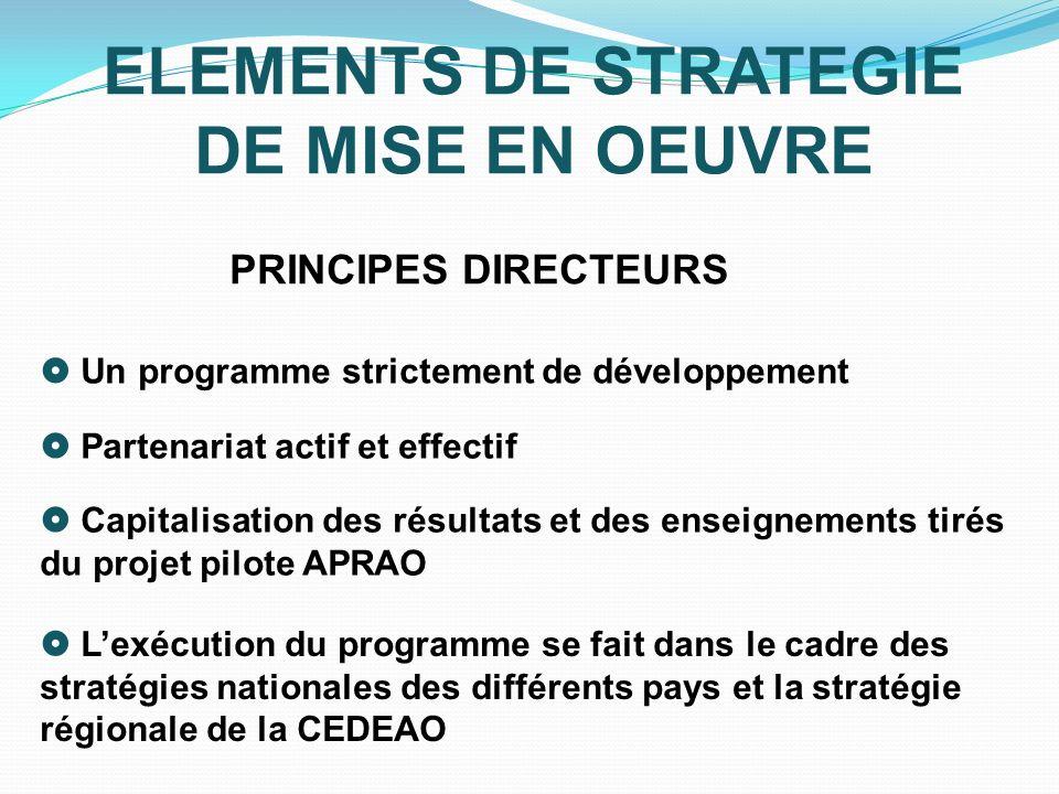 ELEMENTS DE STRATEGIE DE MISE EN OEUVRE PRINCIPES DIRECTEURS Un programme strictement de développement Partenariat actif et effectif Capitalisation de