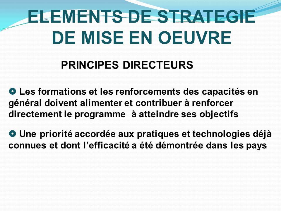 ELEMENTS DE STRATEGIE DE MISE EN OEUVRE PRINCIPES DIRECTEURS Les formations et les renforcements des capacités en général doivent alimenter et contrib