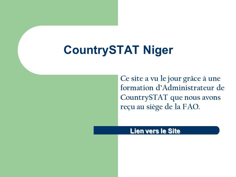 CountrySTAT Niger Lien vers le Site Lien vers le Site Ce site a vu le jour grâce à une formation dAdministrateur de CountrySTAT que nous avons reçu au