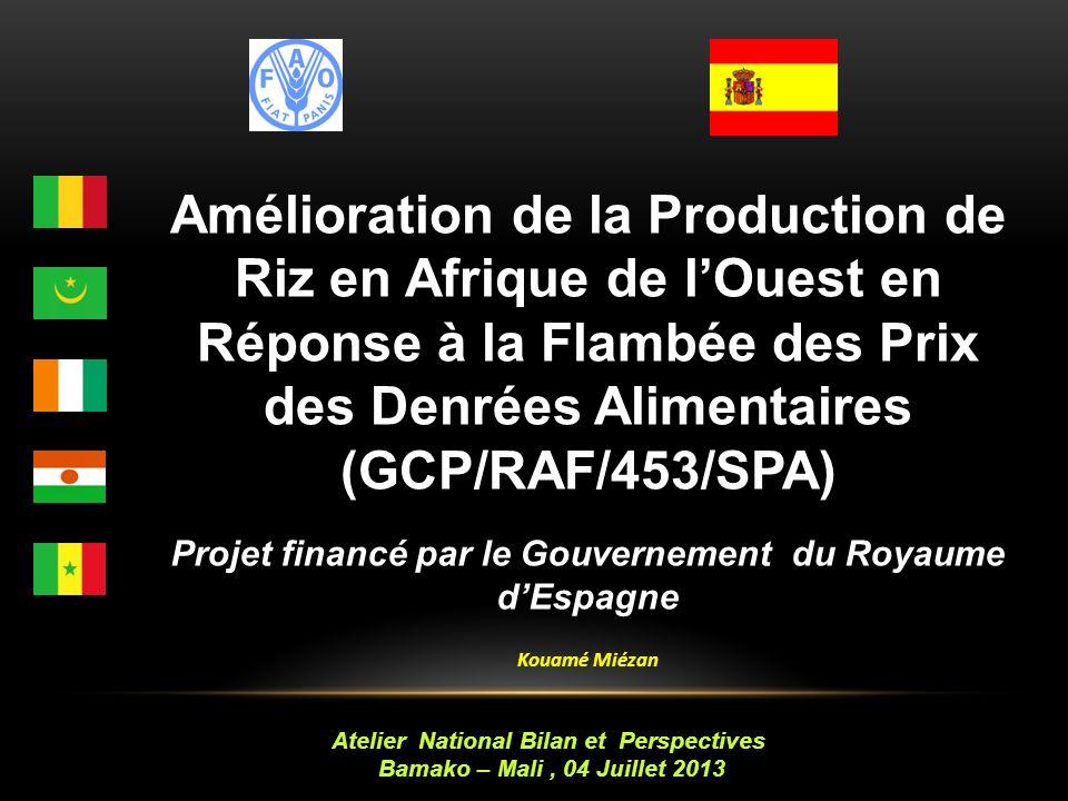 Amélioration de la Production de Riz en Afrique de lOuest en Réponse à la Flambée des Prix des Denrées Alimentaires (GCP/RAF/453/SPA) Projet financé par le Gouvernement du Royaume dEspagne Kouamé Miézan Atelier National Bilan et Perspectives Bamako – Mali, 04 Juillet 2013