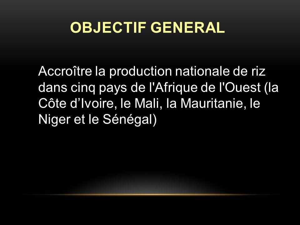 Accroître la production nationale de riz dans cinq pays de l Afrique de l Ouest (la Côte dIvoire, le Mali, la Mauritanie, le Niger et le Sénégal) OBJECTIF GENERAL