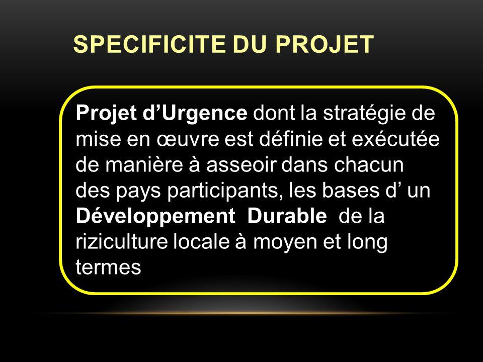SPECIFICITE DU PROJET Projet dUrgence dont la stratégie de mise en œuvre est définie et exécutée de manière à asseoir dans chacun des pays participants, les bases d un Développement Durable de la riziculture locale à moyen et long termes