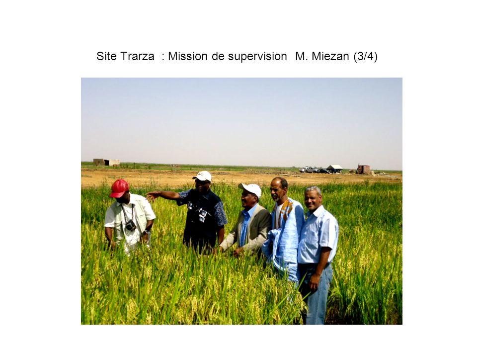 Site Trarza : Mission de supervision M. Miezan (3/4)