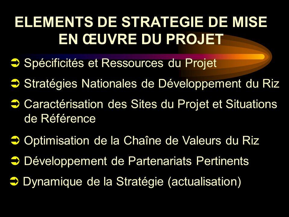 ELEMENTS DE STRATEGIE DE MISE EN ŒUVRE DU PROJET Spécificités et Ressources du Projet Stratégies Nationales de Développement du Riz Optimisation de la