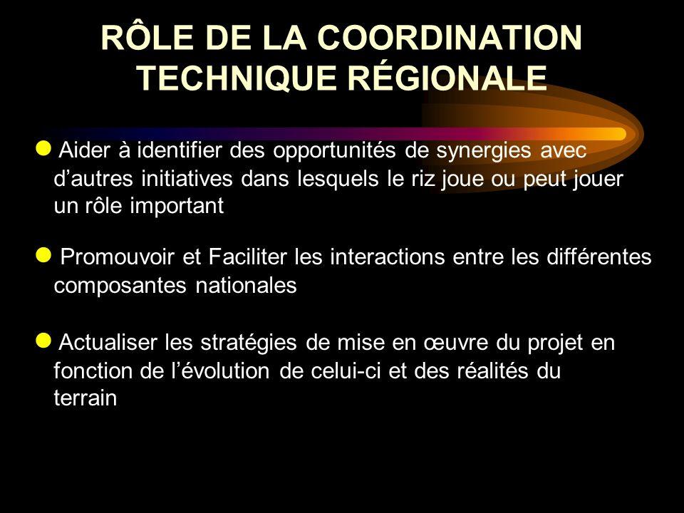 RÔLE DE LA COORDINATION TECHNIQUE RÉGIONALE Aider à identifier des opportunités de synergies avec dautres initiatives dans lesquels le riz joue ou peu