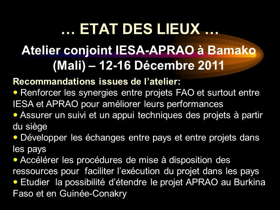 … ETAT DES LIEUX … Atelier conjoint IESA-APRAO à Bamako (Mali) – 12-16 Décembre 2011 Recommandations issues de latelier: Renforcer les synergies entre