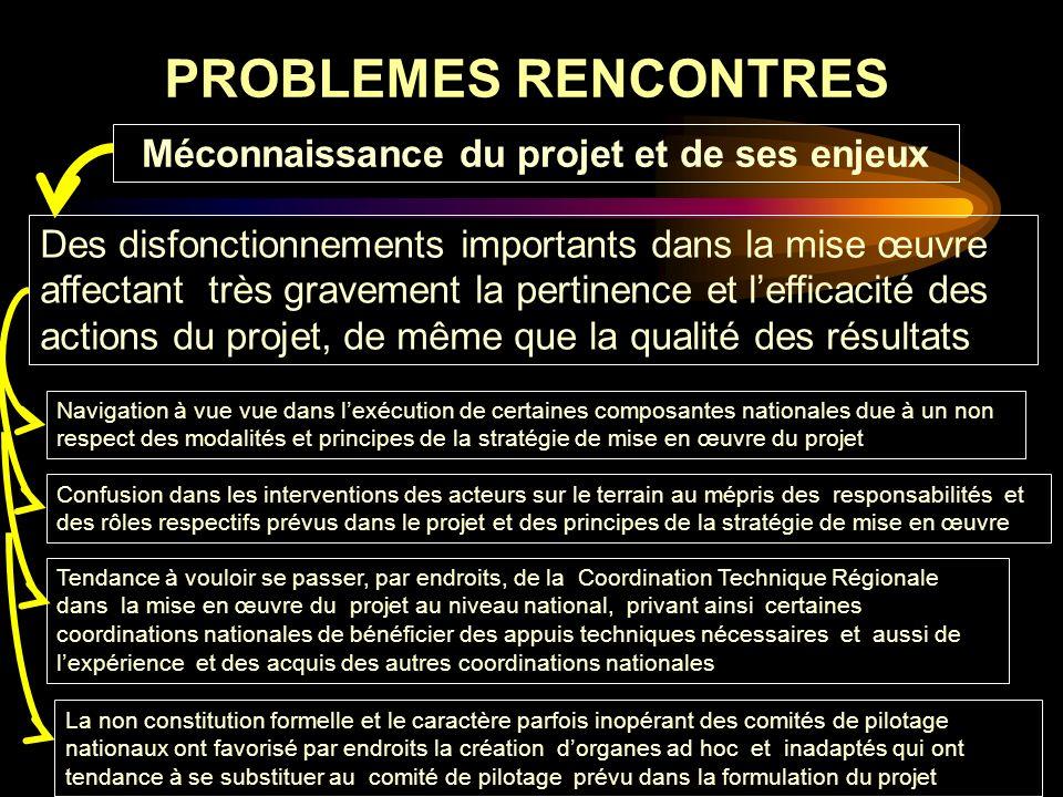 PROBLEMES RENCONTRES Méconnaissance du projet et de ses enjeux Des disfonctionnements importants dans la mise œuvre affectant très gravement la pertin