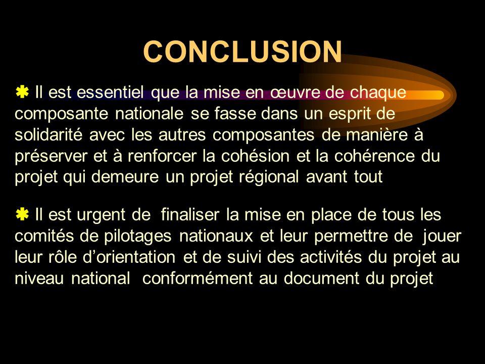 CONCLUSION Il est essentiel que la mise en œuvre de chaque composante nationale se fasse dans un esprit de solidarité avec les autres composantes de m