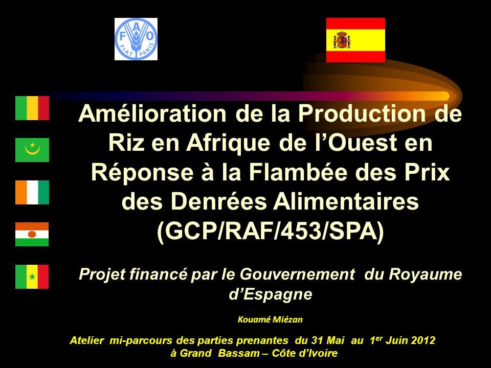 Amélioration de la Production de Riz en Afrique de lOuest en Réponse à la Flambée des Prix des Denrées Alimentaires (GCP/RAF/453/SPA) Projet financé p