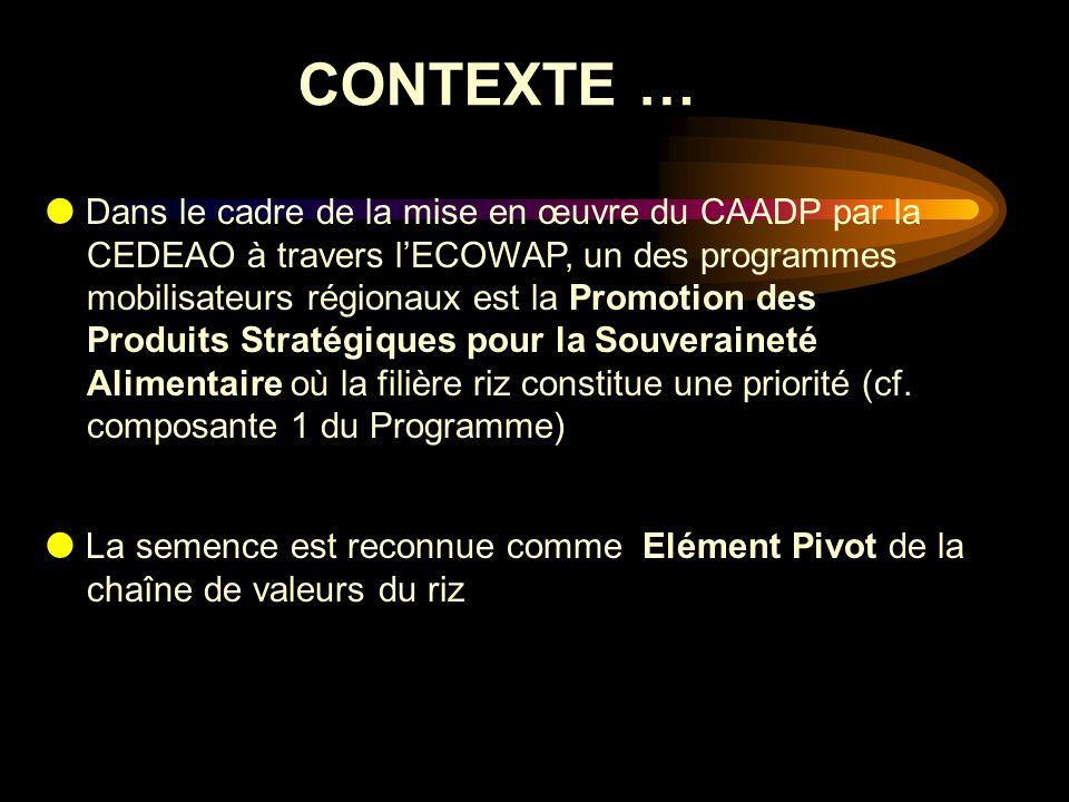 CONTEXTE … La semence est reconnue comme Elément Pivot de la chaîne de valeurs du riz Dans le cadre de la mise en œuvre du CAADP par la CEDEAO à trave