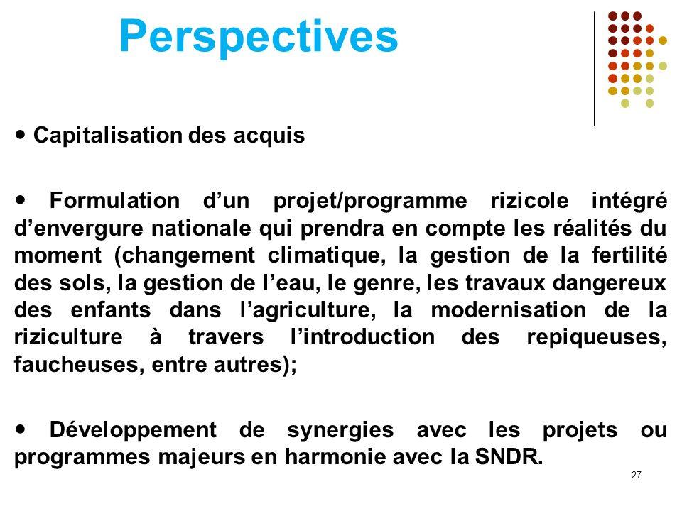 Perspectives Capitalisation des acquis Formulation dun projet/programme rizicole intégré denvergure nationale qui prendra en compte les réalités du mo