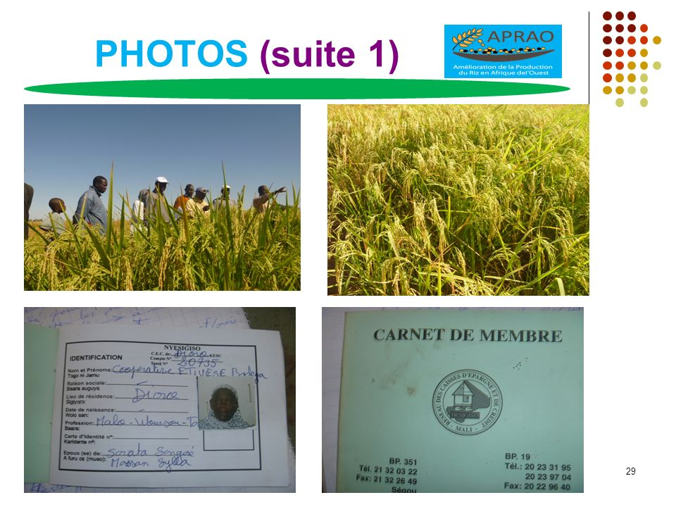 PHOTOS (suite 1) 29