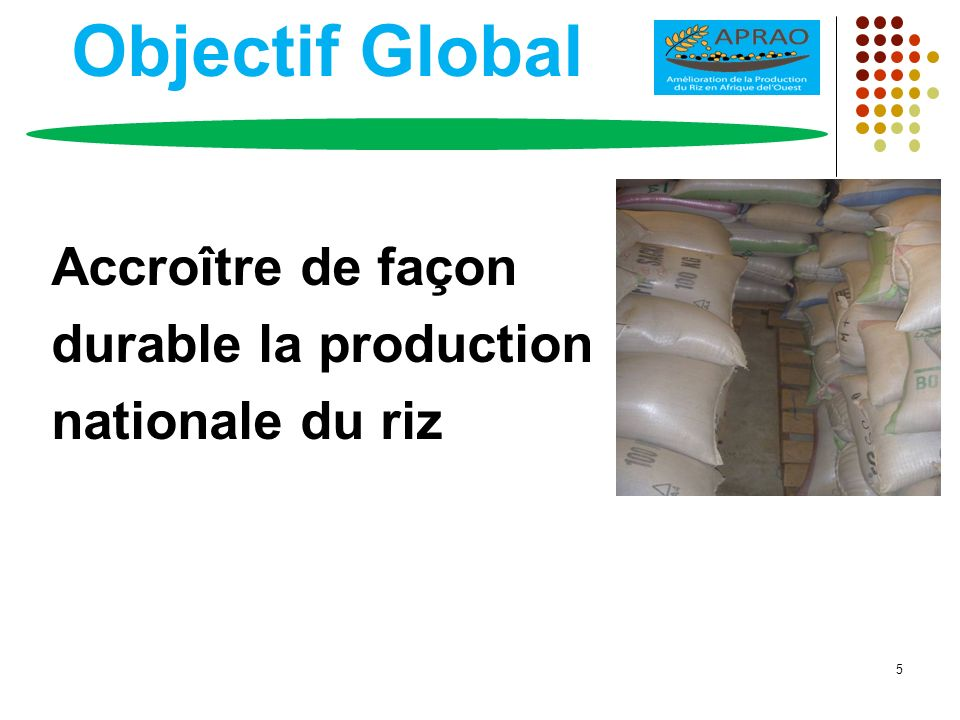 Objectif Global Accroître de façon durable la production nationale du riz 5