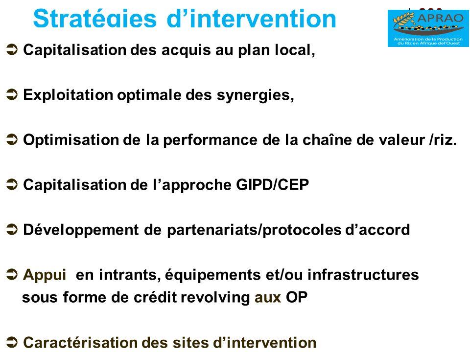 Stratégies dintervention Capitalisation des acquis au plan local, Exploitation optimale des synergies, Optimisation de la performance de la chaîne de
