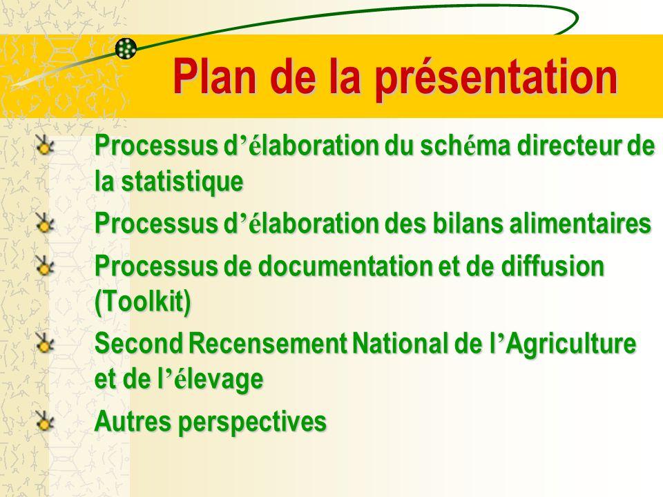 I.Processus d é laboration du Sch é ma Directeur de la Statistique (SNDS)....