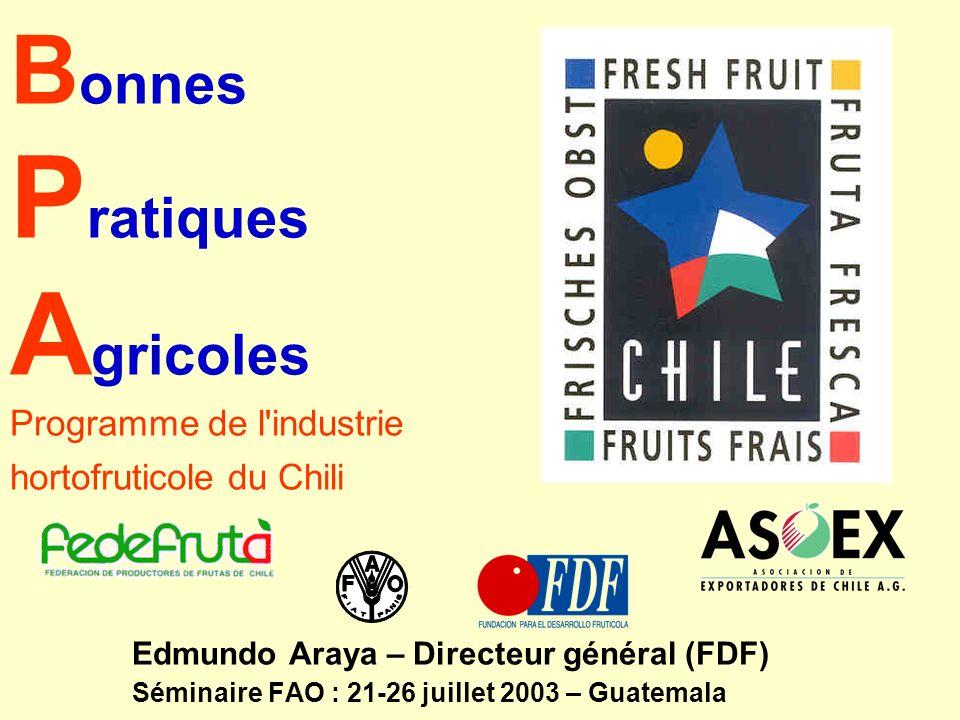 B onnes P ratiques A gricoles Programme de l'industrie hortofruticole du Chili Edmundo Araya – Directeur général (FDF) Séminaire FAO : 21-26 juillet 2