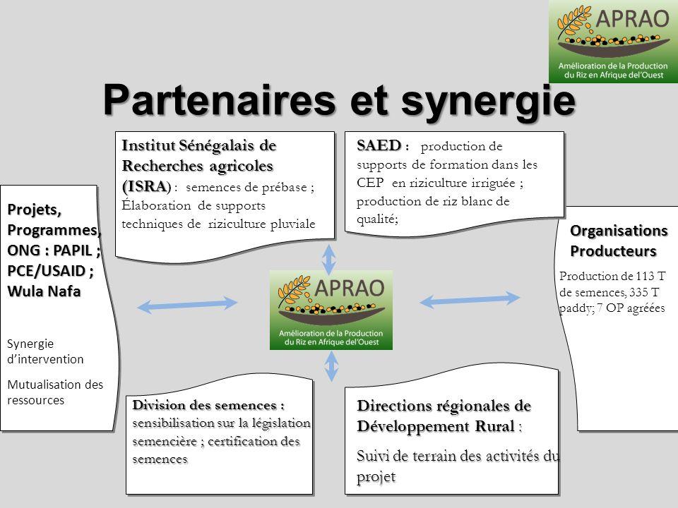 Partenaires et synergie Organisations Producteurs Production de 113 T de semences, 335 T paddy; 7 OP agréées Projets, Programmes, ONG : PAPIL ; PCE/US