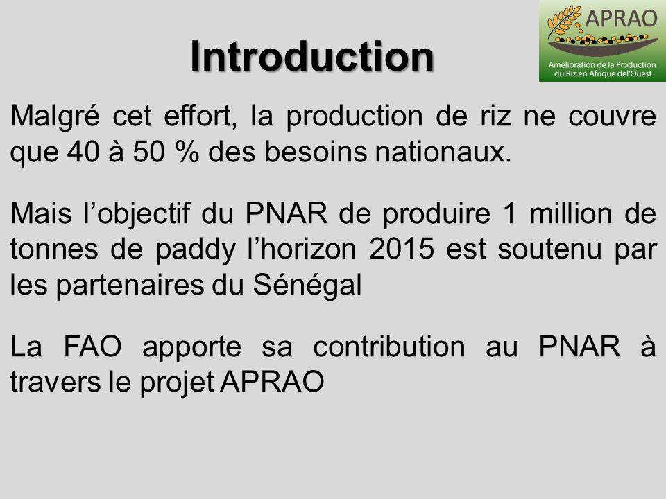 Malgré cet effort, la production de riz ne couvre que 40 à 50 % des besoins nationaux. Mais lobjectif du PNAR de produire 1 million de tonnes de paddy