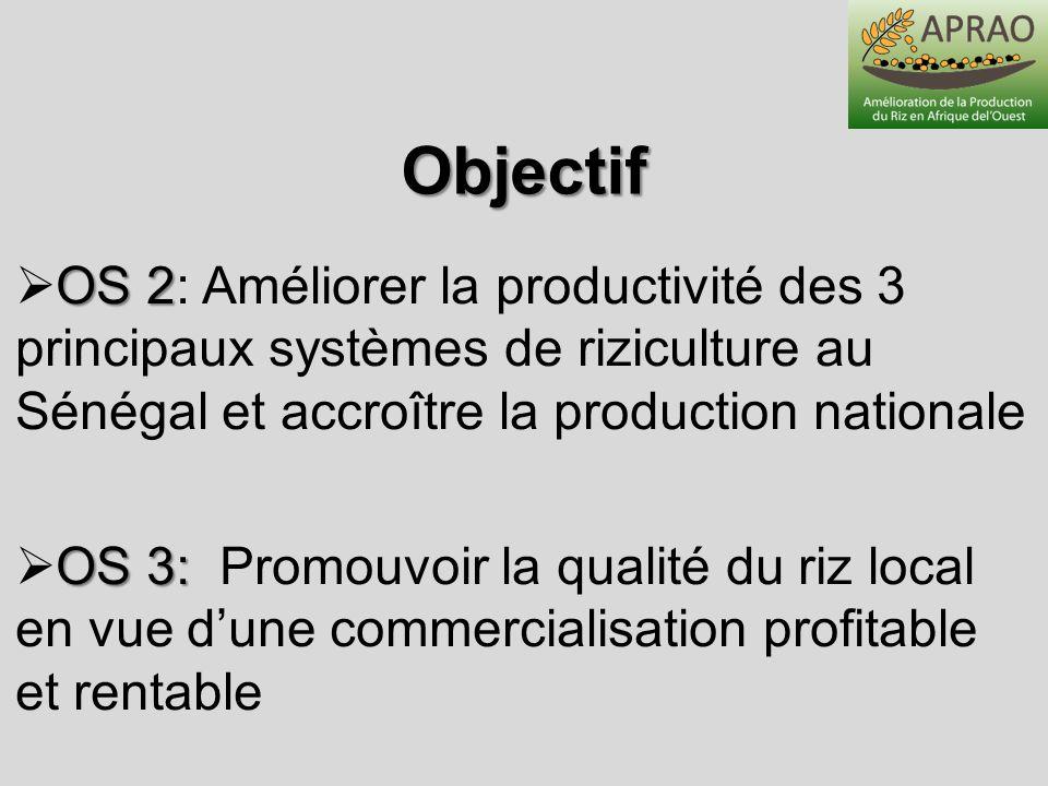 Objectif OS 2 OS 2: Améliorer la productivité des 3 principaux systèmes de riziculture au Sénégal et accroître la production nationale OS 3: OS 3: Pro