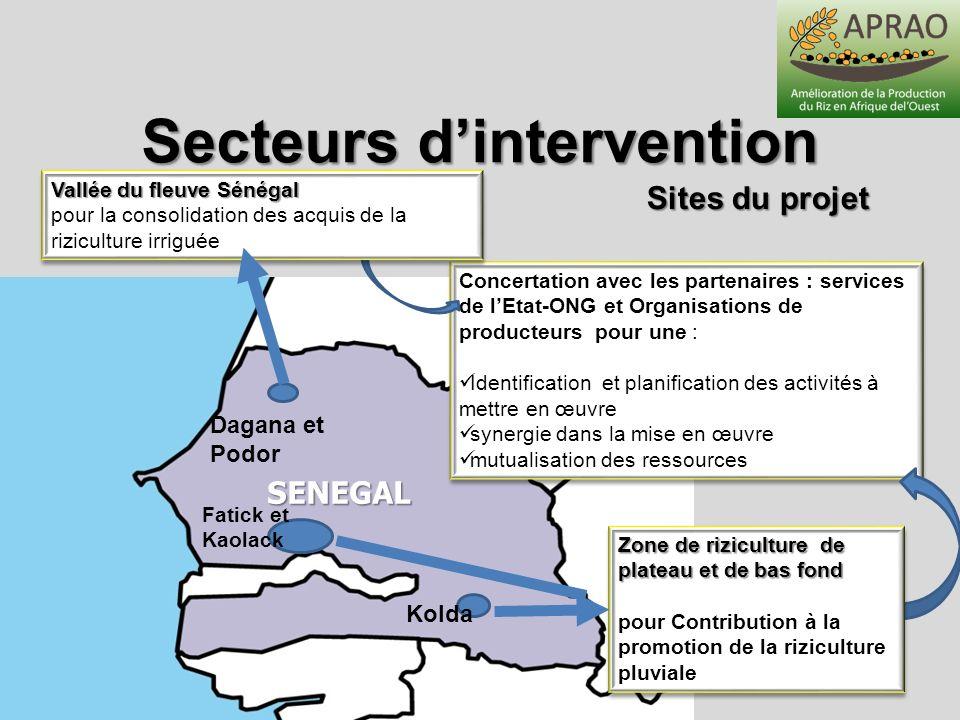 Caractérisation des sites Secteurs dintervention enquêtes de base au niveau des sites du projet, nombre de producteurs enquêtés : 316 zone pluviale (bas-fond et plateau) : Kaolack (44) ; Fatick (102); Kolda (70); zone irriguée: Saint Louis (100)
