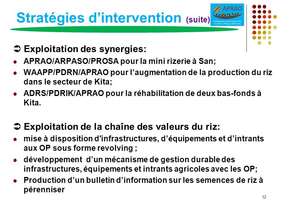 Stratégies dintervention (suite) Exploitation des synergies: APRAO/ARPASO/PROSA pour la mini rizerie à San; WAAPP/PDRN/APRAO pour laugmentation de la
