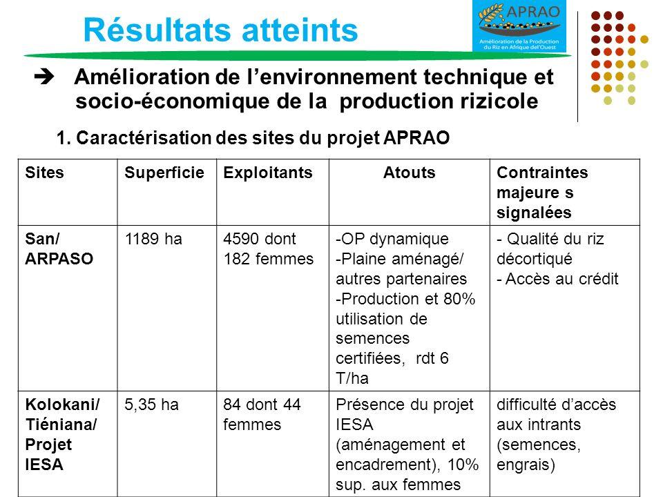 Résultats atteints Amélioration de lenvironnement technique et socio-économique de la production rizicole SitesSuperficieExploitantsAtoutsContraintes