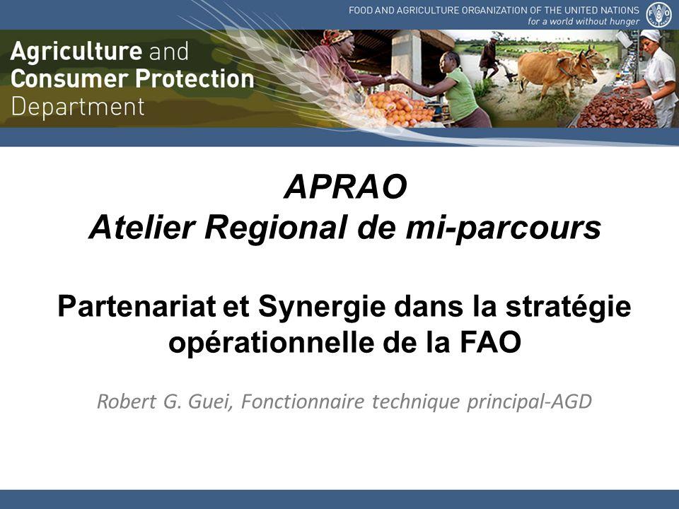 APRAO Atelier Regional de mi-parcours Partenariat et Synergie dans la stratégie opérationnelle de la FAO Robert G.