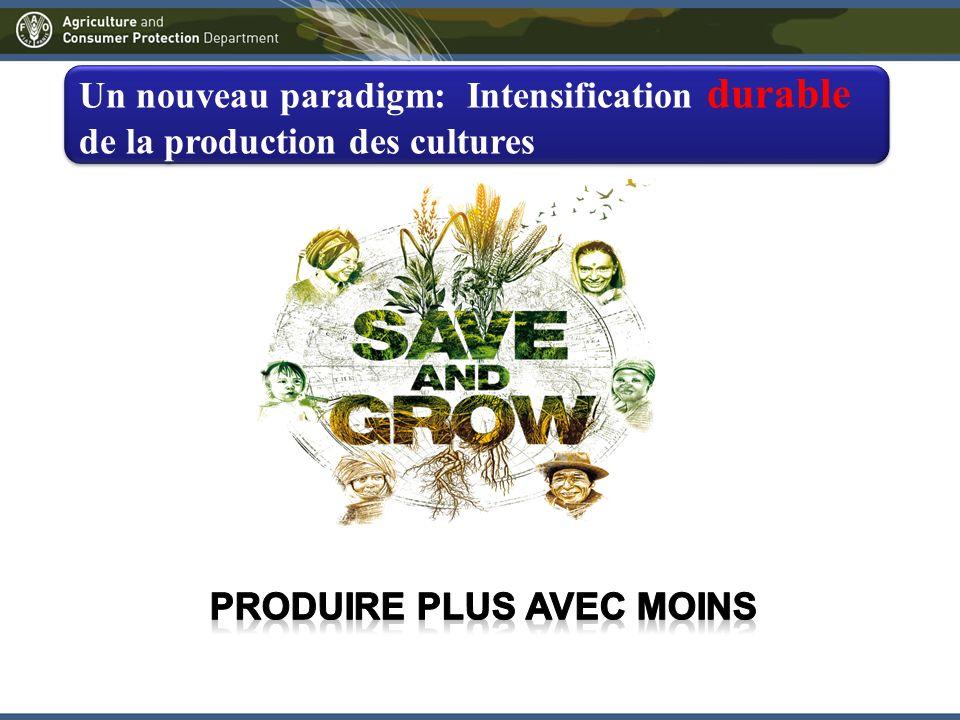 Un nouveau paradigm: Intensification durable de la production des cultures