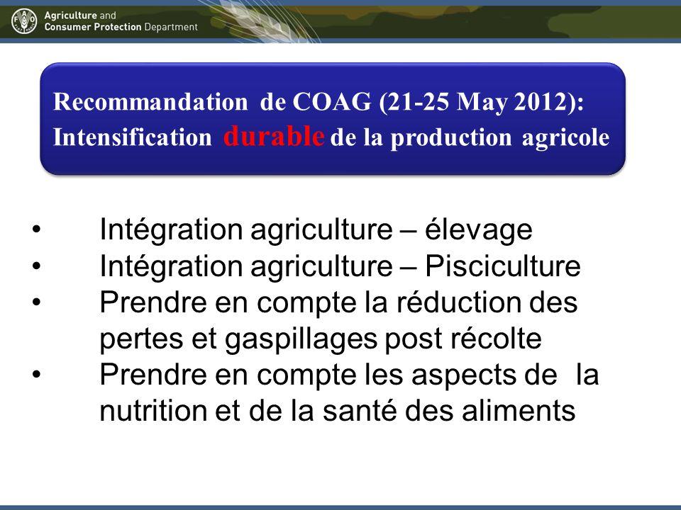 Recommandation de COAG (21-25 May 2012): Intensification durable de la production agricole Intégration agriculture – élevage Intégration agriculture – Pisciculture Prendre en compte la réduction des pertes et gaspillages post récolte Prendre en compte les aspects de la nutrition et de la santé des aliments