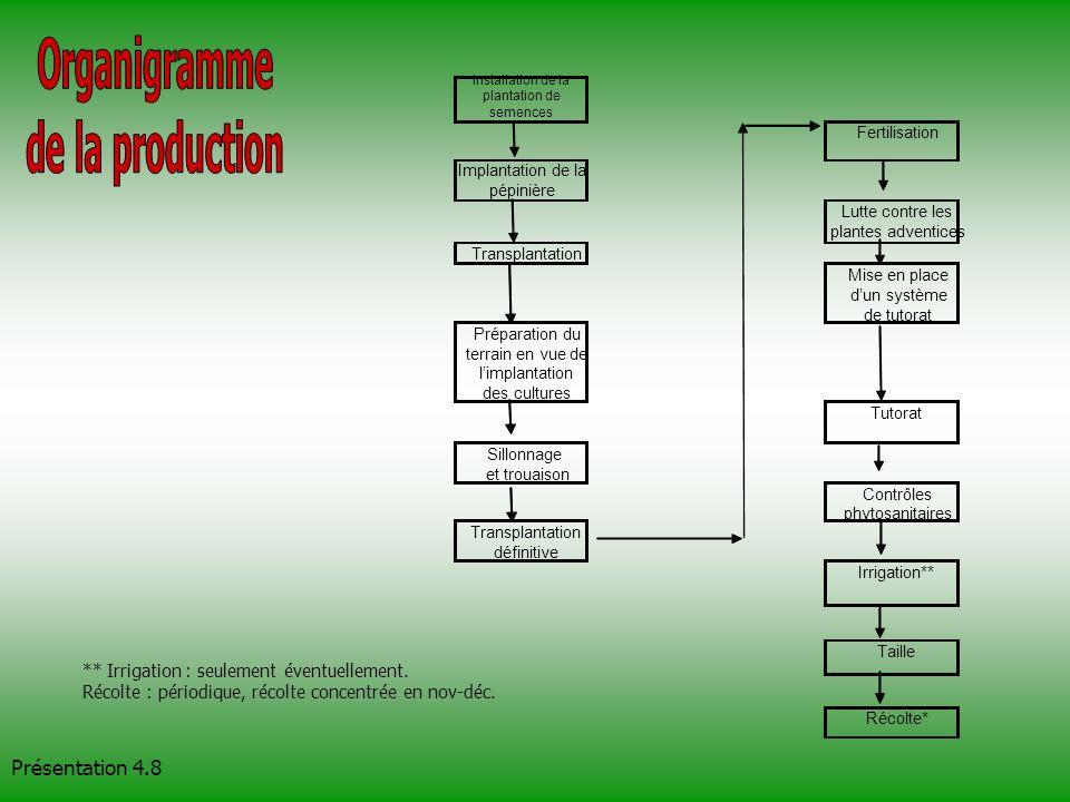 Installation de la plantation de semences Fertilisation Implantation de la pépinière Lutte contre les plantes adventices Transplantation Mise en place