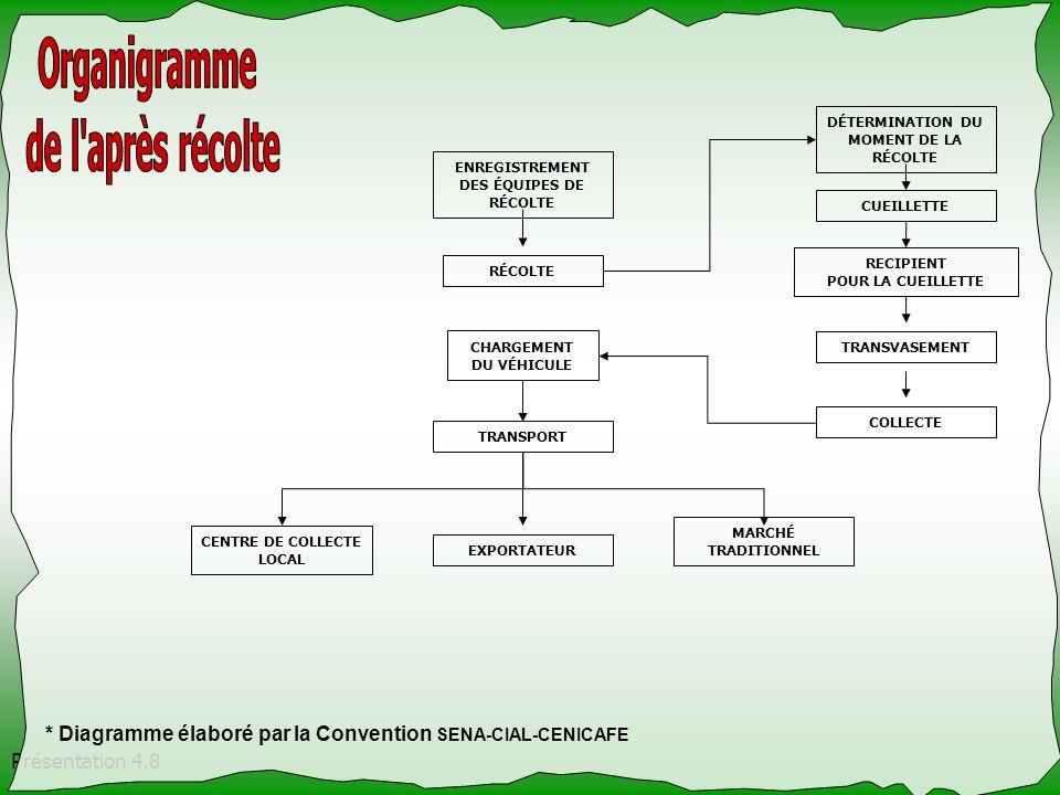 Présentation 4.8 ENREGISTREMENT DES ÉQUIPES DE RÉCOLTE RÉCOLTE CHARGEMENT DU VÉHICULE TRANSPORT CENTRE DE COLLECTE LOCAL EXPORTATEUR MARCHÉ TRADITIONN