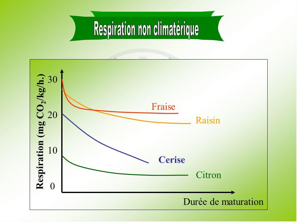 Respiración Climatérica Durée de maturation Respiration (mg CO 2 /kg/h.) 180 160 140 120 100 80 60 40 20 0 Chérimole Mangue Tomate Figue