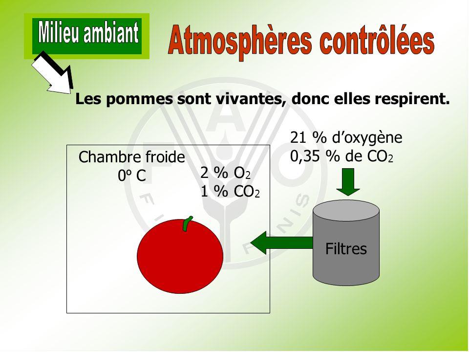 La modification de latmosphère à lintérieur de lemballage : réduit le rythme de respiration, réduit la sensibilité à léthylène, allonge la vie du produit en entrepôt.