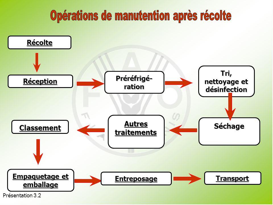 Présentation 3.2 Offre excédentaire de produits. Mauvaises techniques de gestion de la récolte. Manutention inadaptée du produit dans la filière. Domm