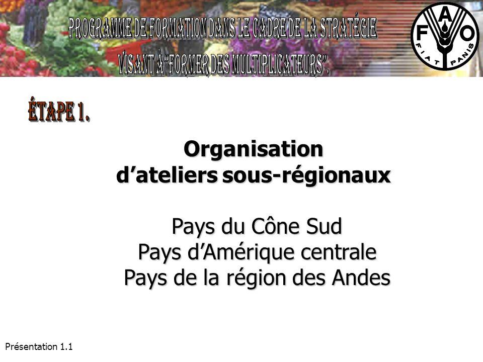 Présentation 1.1 Organisation dateliers sous-régionaux Pays du Cône Sud Pays dAmérique centrale Pays dAmérique centrale Pays de la région des Andes Pa