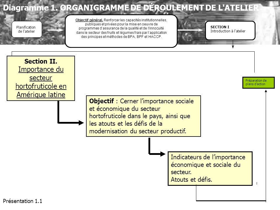 Présentation 1.1 Objectif : Cerner limportance sociale et économique du secteur hortofruticole dans le pays, ainsi que les atouts et les défis de la m