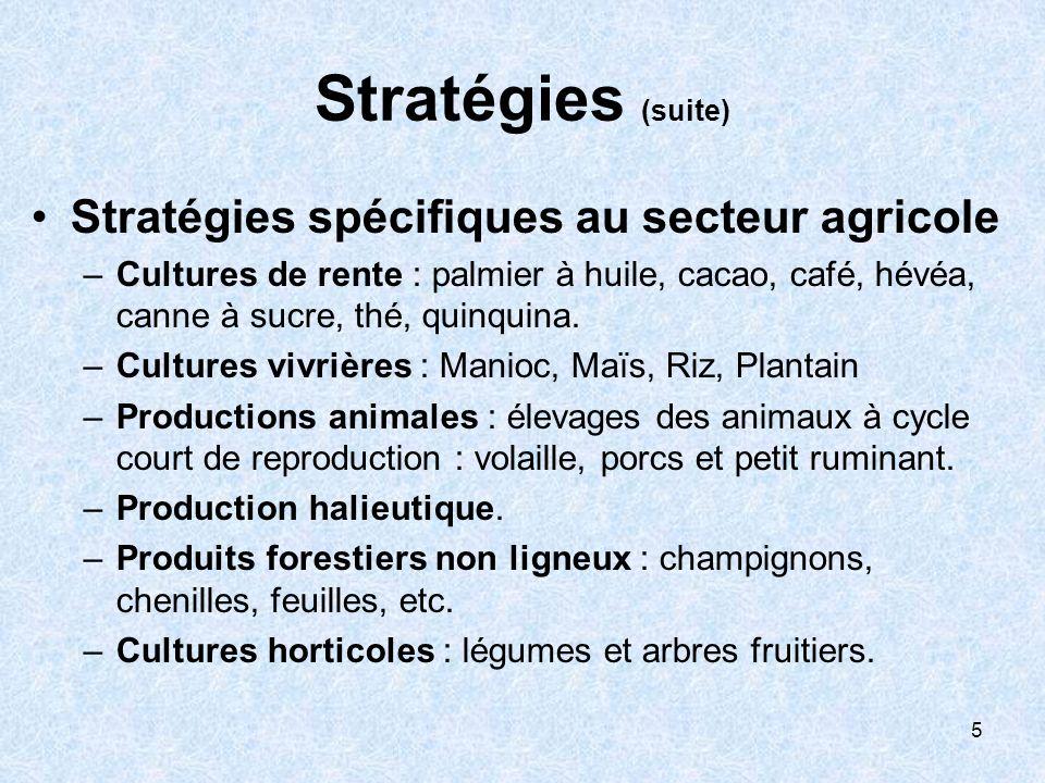 5 Stratégies (suite) Stratégies spécifiques au secteur agricole –Cultures de rente : palmier à huile, cacao, café, hévéa, canne à sucre, thé, quinquina.
