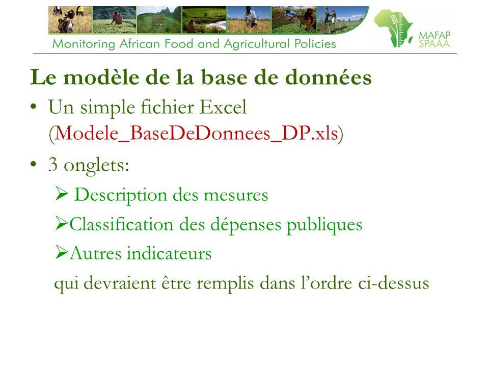 Le modèle de la base de données Un simple fichier Excel (Modele_BaseDeDonnees_DP.xls) 3 onglets: Description des mesures Classification des dépenses publiques Autres indicateurs qui devraient être remplis dans lordre ci-dessus